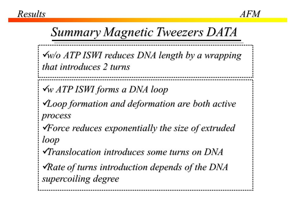 ResultsAFM Summary Magnetic Tweezers DATA w/o ATP ISWI reduces DNA length by a wrapping that introduces 2 turns w/o ATP ISWI reduces DNA length by a w
