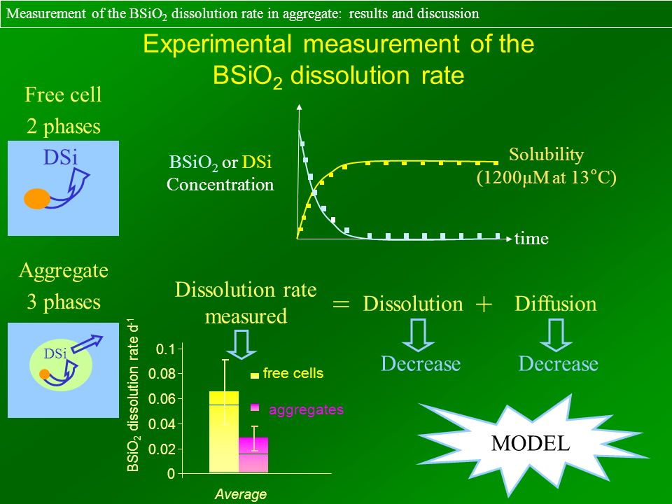 DSi time BSiO 2 or DSi Concentration Solubility (1200µM at 13°C) Dissolution rate measured = DissolutionDiffusion + DSi Aggregate 3 phases Free cell 2