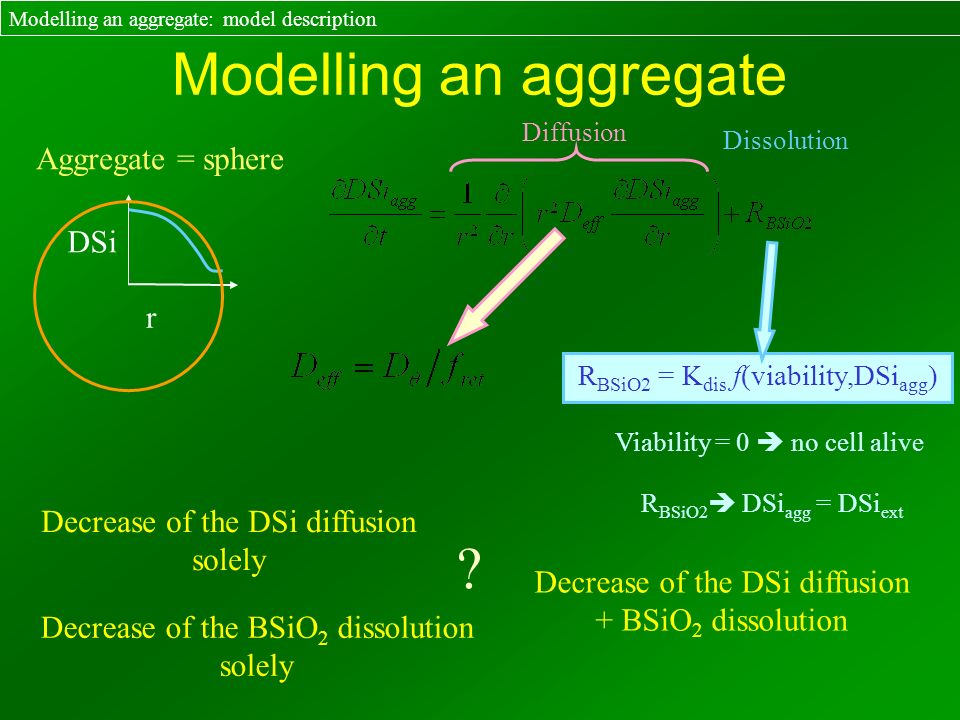R BSiO2 = K dis f(viability,DSi agg ) Modelling an aggregate Aggregate = sphere Modelling an aggregate: model description r DSi Decrease of the DSi di