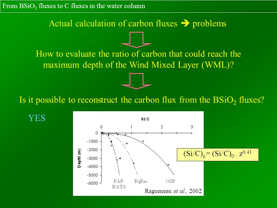 How to evaluate the ratio of carbon that could reach the maximum depth of the Wind Mixed Layer (WML)? Is it possible to reconstruct the carbon flux fr