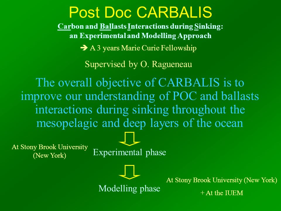 Post Doc CARBALIS Carbon and Ballasts Interactions during Sinking: an Experimental and Modelling Approach The overall objective of CARBALIS is to impr