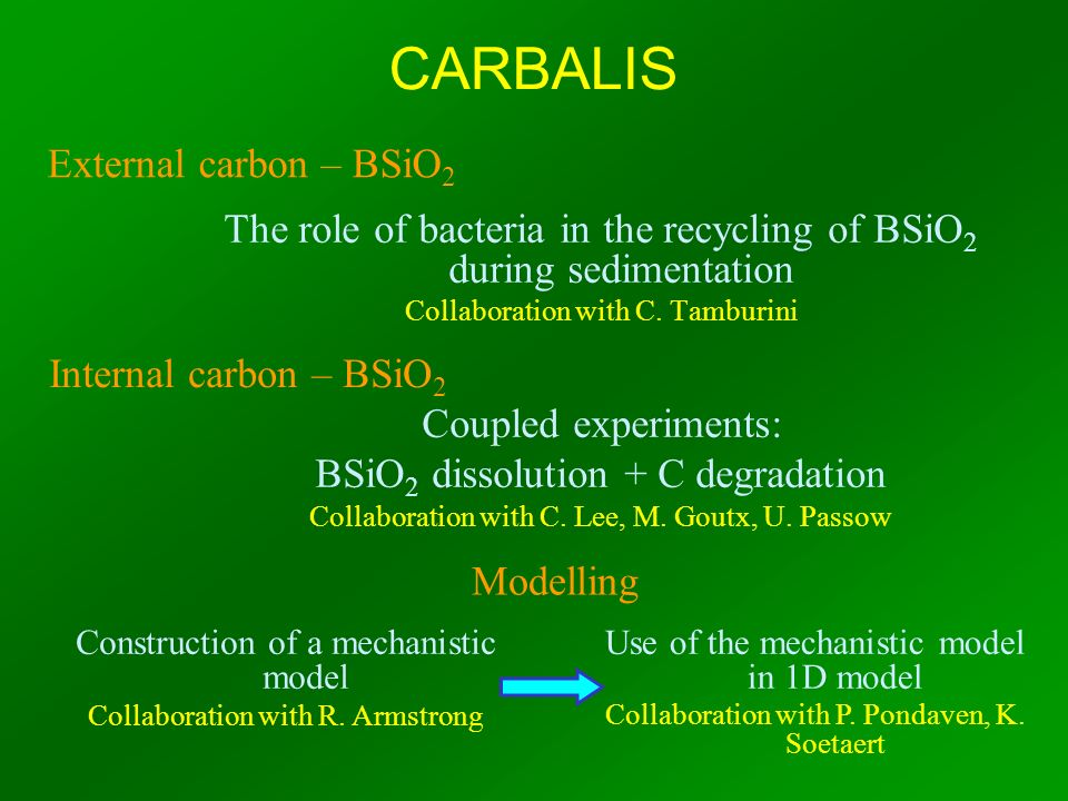 The role of bacteria in the recycling of BSiO 2 during sedimentation Collaboration with C. Tamburini Coupled experiments: BSiO 2 dissolution + C degra