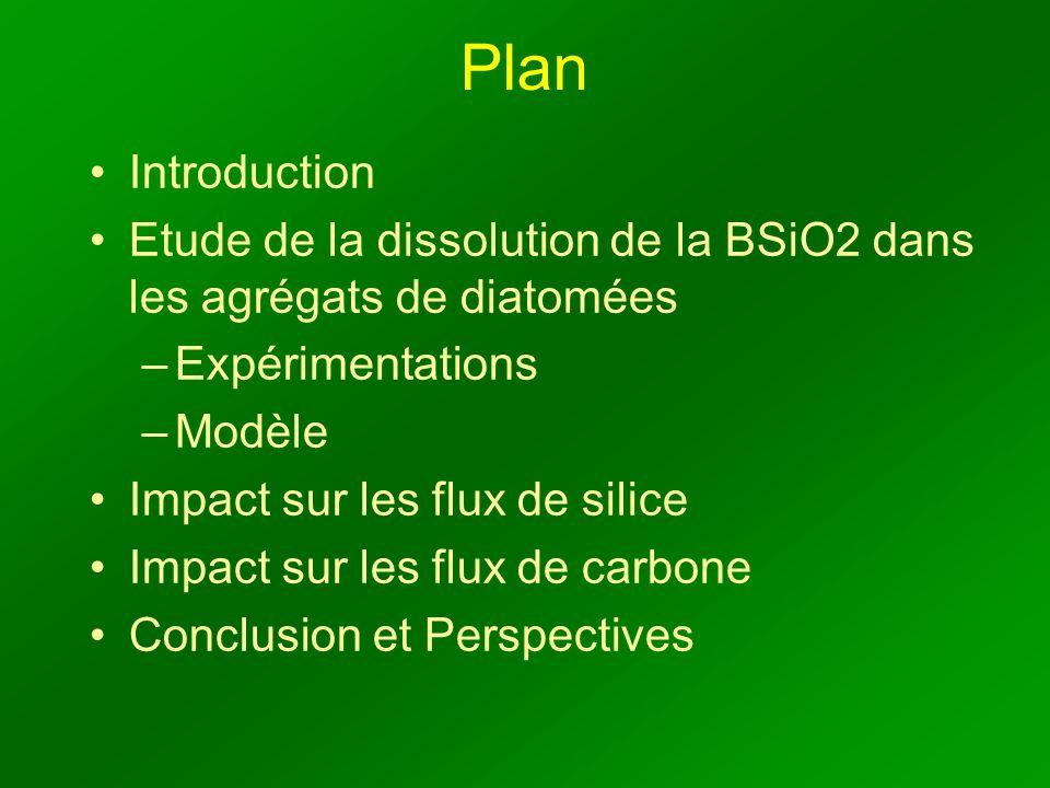 Plan Introduction Etude de la dissolution de la BSiO2 dans les agrégats de diatomées –Expérimentations –Modèle Impact sur les flux de silice Impact sur les flux de carbone Conclusion et Perspectives