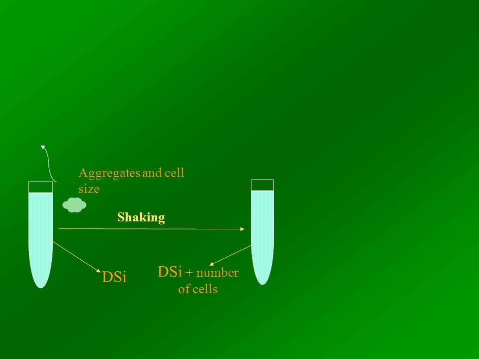 DSi Shaking DSi + number of cells Aggregates and cell size
