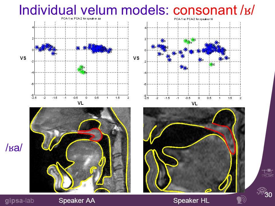 gipsa-lab 30 Individual velum models: consonant / ʁ / Speaker AASpeaker HL /ʁa//ʁa/ VL VS