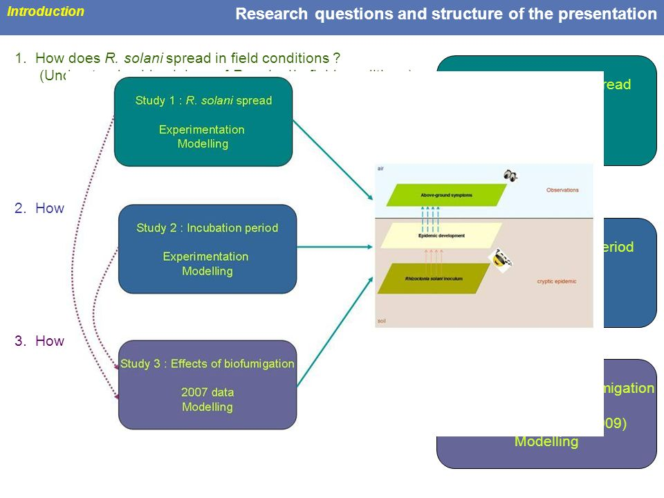 11 Research questions and structure of the presentation Introduction 1. How does R. solani spread in field conditions ? (Understand epidemiology of R.