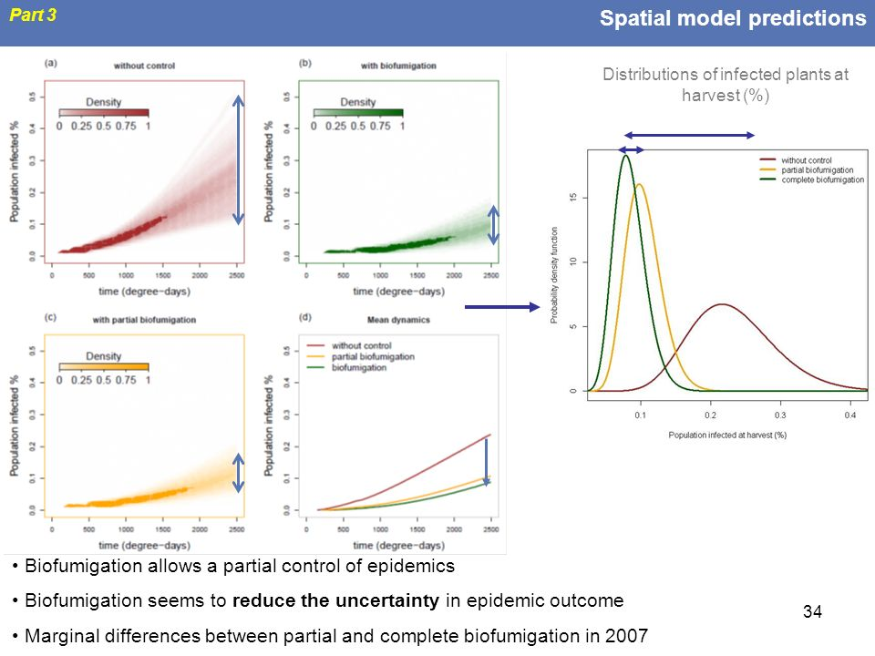 34 Spatial model predictions Part 3 Biofumigation allows a partial control of epidemics Biofumigation seems to reduce the uncertainty in epidemic outc