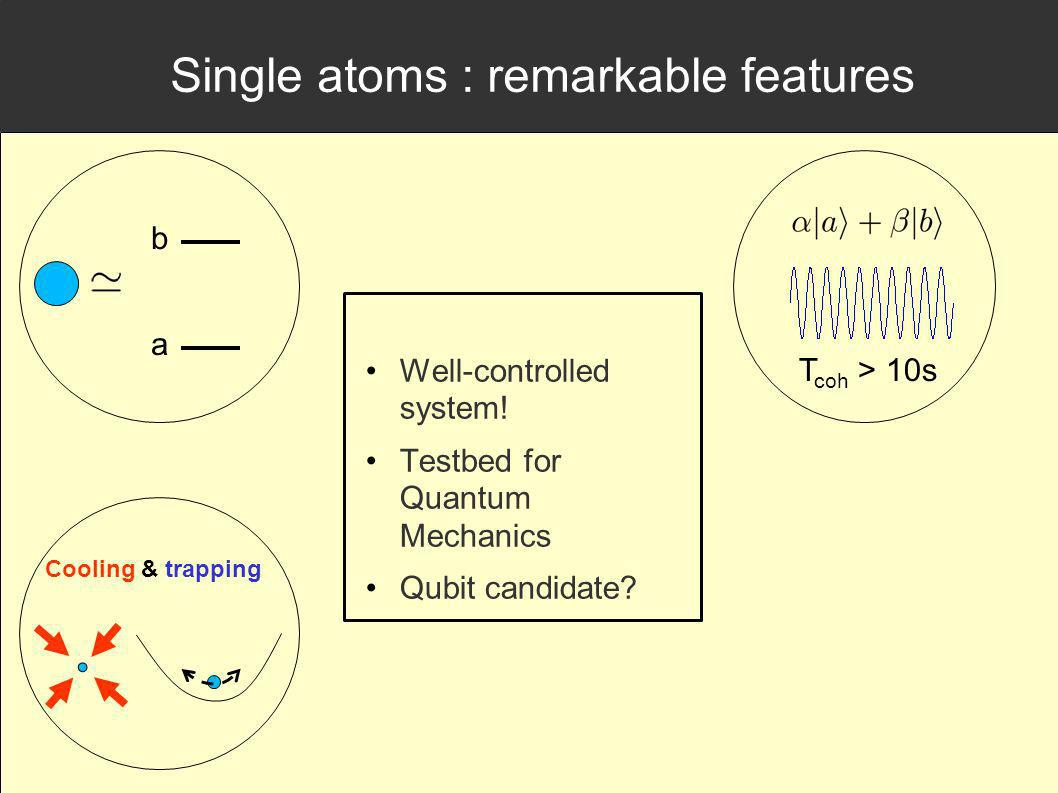 Single atoms : remarkable features Well-controlled system.