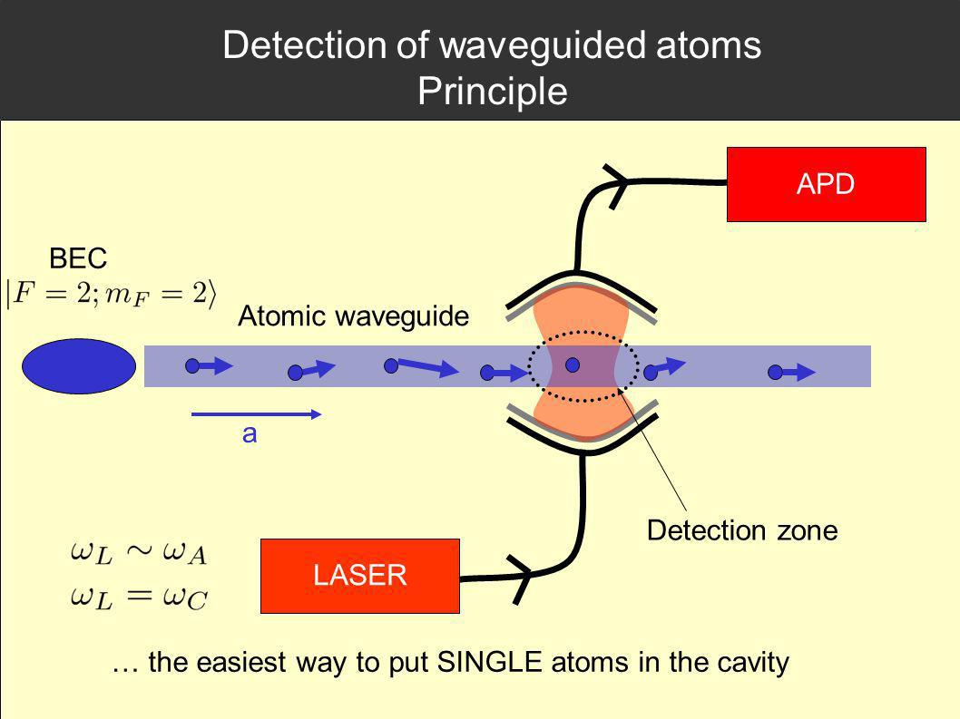 Detection of waveguided atoms Principle LASER APD Atomic waveguide Detection zone a BEC … the easiest way to put SINGLE atoms in the cavity