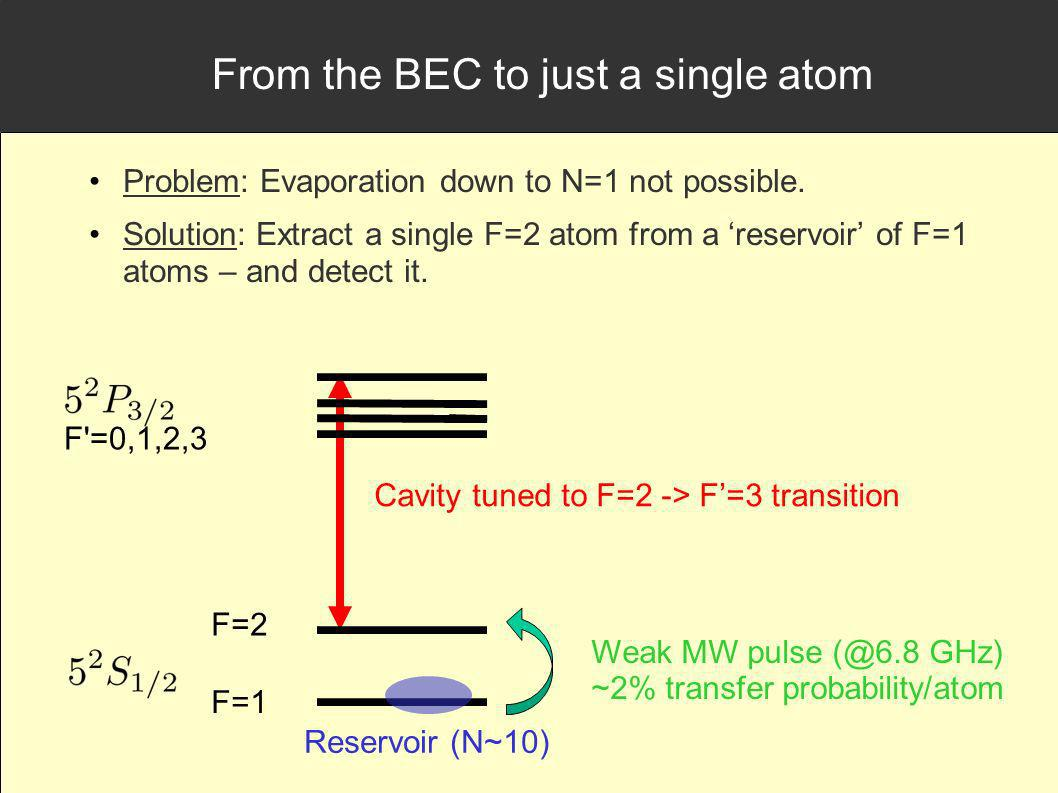 From the BEC to just a single atom Problem: Evaporation down to N=1 not possible.