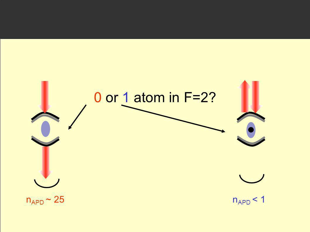 0 or 1 atom in F=2? n APD ~ 25n APD < 1