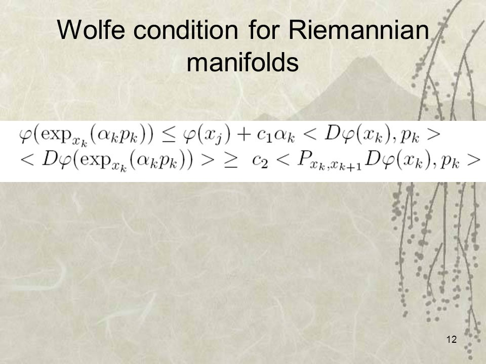 12 Wolfe condition for Riemannian manifolds