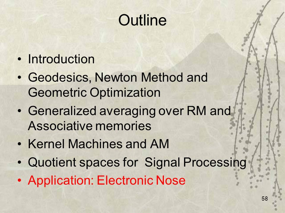 58 Outline Introduction Geodesics, Newton Method and Geometric Optimization Generalized averaging over RM and Associative memories Kernel Machines and