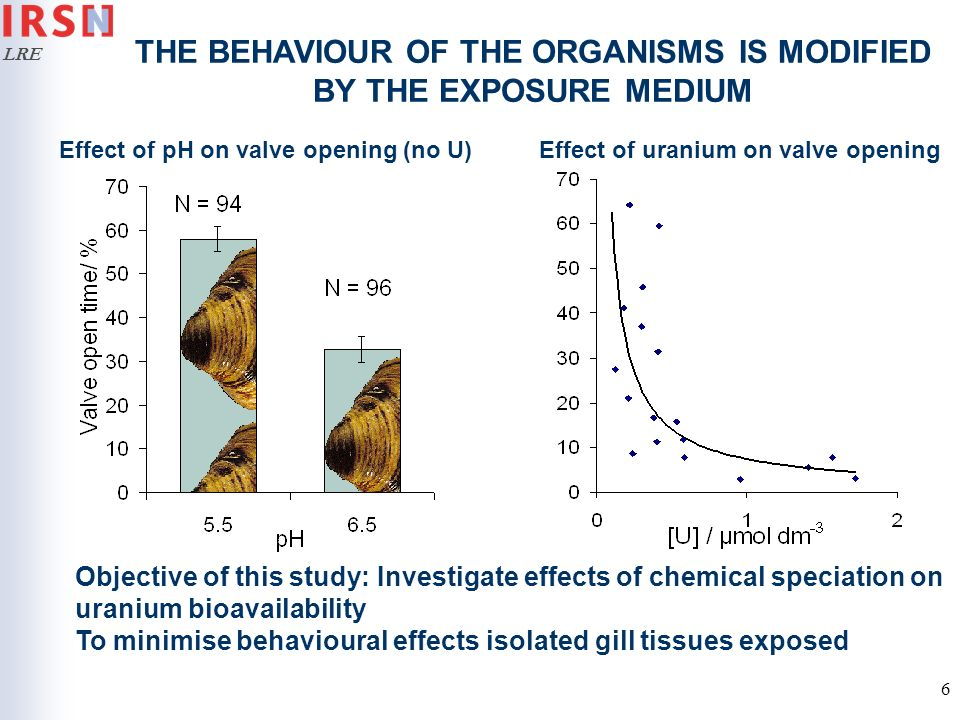 LRE 6 Effect of pH on valve opening (no U)Effect of uranium on valve opening THE BEHAVIOUR OF THE ORGANISMS IS MODIFIED BY THE EXPOSURE MEDIUM Objecti