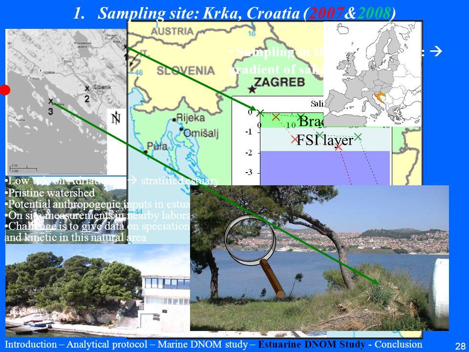 28 Sampling in the water column: gradient of salinity FSI layer Brackish Seawater 1.Sampling site: Krka, Croatia (2007&2008) Pristine watershed Potent