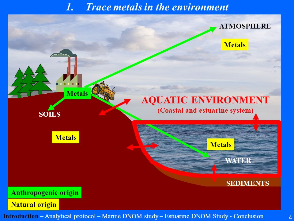 4 1.Trace metals in the environment Introduction – Analytical protocol – Marine DNOM study – Estuarine DNOM Study - Conclusion Metals Natural origin A