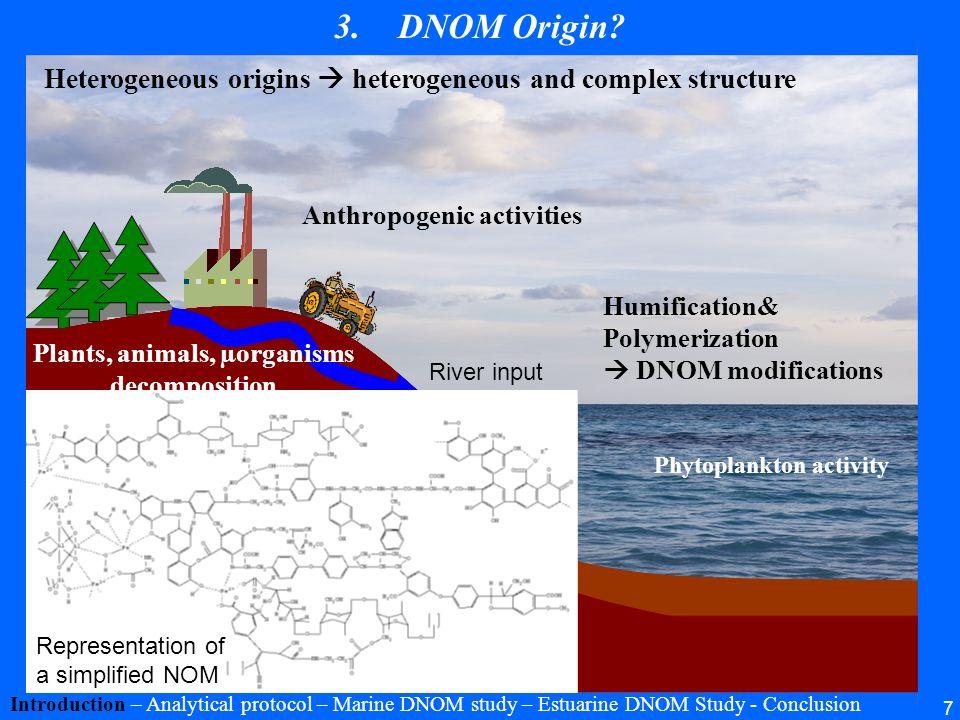 7 3.DNOM Origin? Introduction – Analytical protocol – Marine DNOM study – Estuarine DNOM Study - Conclusion Anthropogenic activities Photosynthesis Ba
