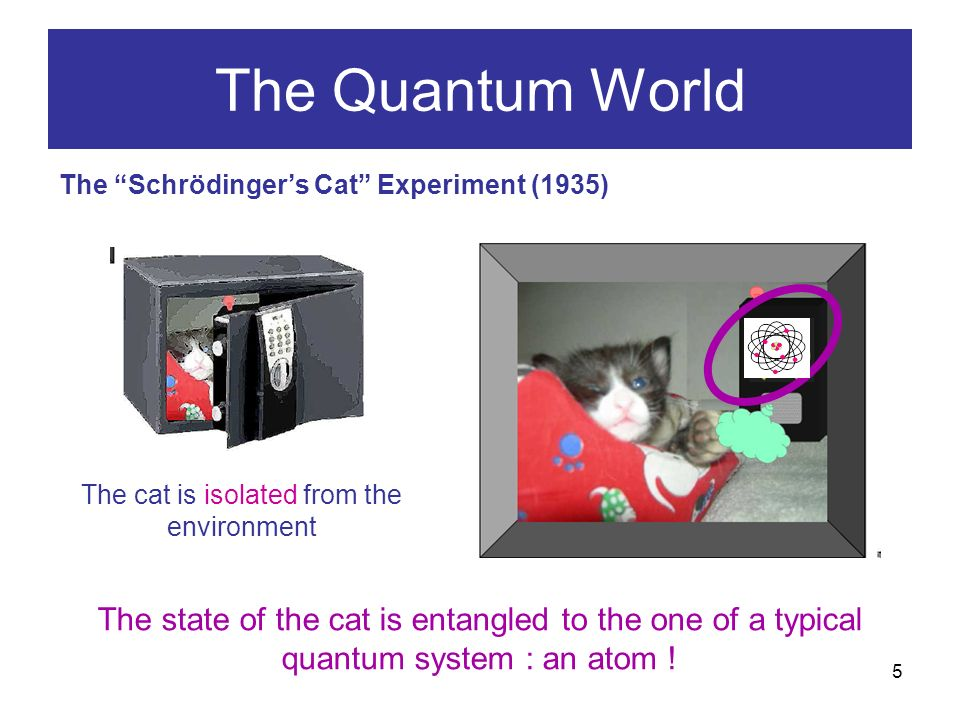 5 The Quantum World The Schrödingers Cat Experiment (1935) The cat is isolated from the environment The state of the cat is entangled to the one of a typical quantum system : an atom !
