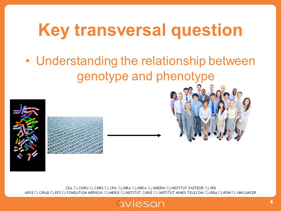 CEACHRUCNRSCPUINRAINRIAINSERMINSTITUT PASTEURIRD ARIISEFSINERISINSTITUT CURIEINSTITUT MINES-TELECOMUNICANCERIRBAIRSNCIRADFONDATION MERIEUX Key transversal question Understanding the relationship between genotype and phenotype 4