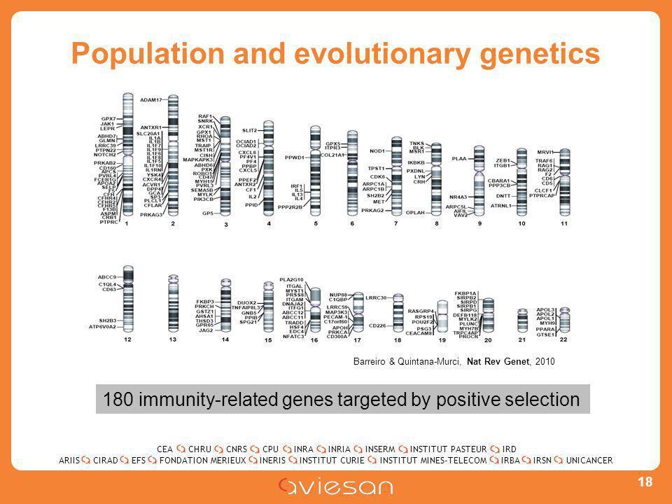 CEACHRUCNRSCPUINRAINRIAINSERMINSTITUT PASTEURIRD ARIISEFSINERISINSTITUT CURIEINSTITUT MINES-TELECOMUNICANCERIRBAIRSNCIRADFONDATION MERIEUX Population and evolutionary genetics 18 Barreiro & Quintana-Murci, Nat Rev Genet, 2010 180 immunity-related genes targeted by positive selection