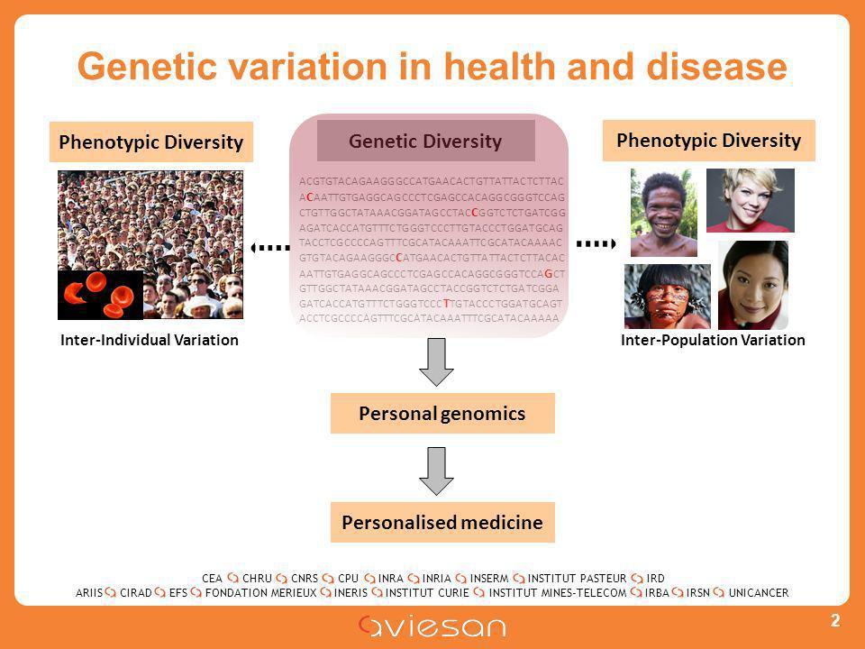 CEACHRUCNRSCPUINRAINRIAINSERMINSTITUT PASTEURIRD ARIISEFSINERISINSTITUT CURIEINSTITUT MINES-TELECOMUNICANCERIRBAIRSNCIRADFONDATION MERIEUX Genetic variation in health and disease 2 ACGTGTACAGAAGGGCCATGAACACTGTTATTACTCTTAC A C AATTGTGAGGCAGCCCTCGAGCCACAGGCGGGTCCAG CTGTTGGCTATAAACGGATAGCCTAC C GGTCTCTGATCGG AGATCACCATGTTTCTGGGTCCCTTGTACCCTGGATGCAG TACCTCGCCCCAGTTTCGCATACAAATTCGCATACAAAAC GTGTACAGAAGGGC C ATGAACACTGTTATTACTCTTACAC AATTGTGAGGCAGCCCTCGAGCCACAGGCGGGTCCA G CT GTTGGCTATAAACGGATAGCCTACCGGTCTCTGATCGGA GATCACCATGTTTCTGGGTCCC T TGTACCCTGGATGCAGT ACCTCGCCCCAGTTTCGCATACAAATTTCGCATACAAAAA Genetic Diversity Inter-Population Variation Phenotypic Diversity Inter-Individual Variation Personal genomics Personalised medicine