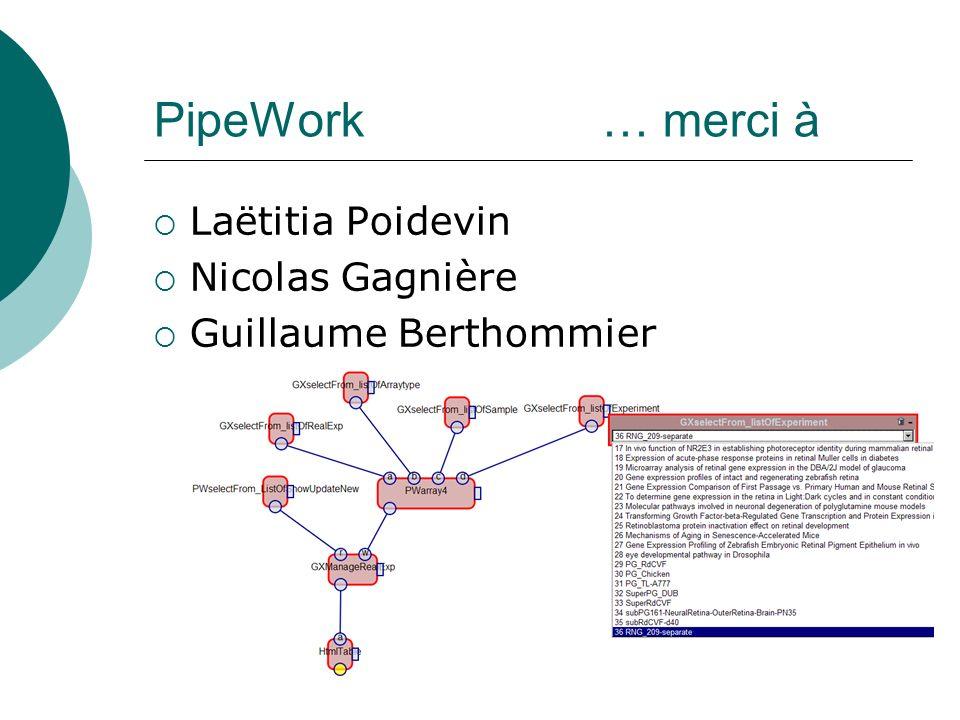 PipeWork … merci à Laëtitia Poidevin Nicolas Gagnière Guillaume Berthommier