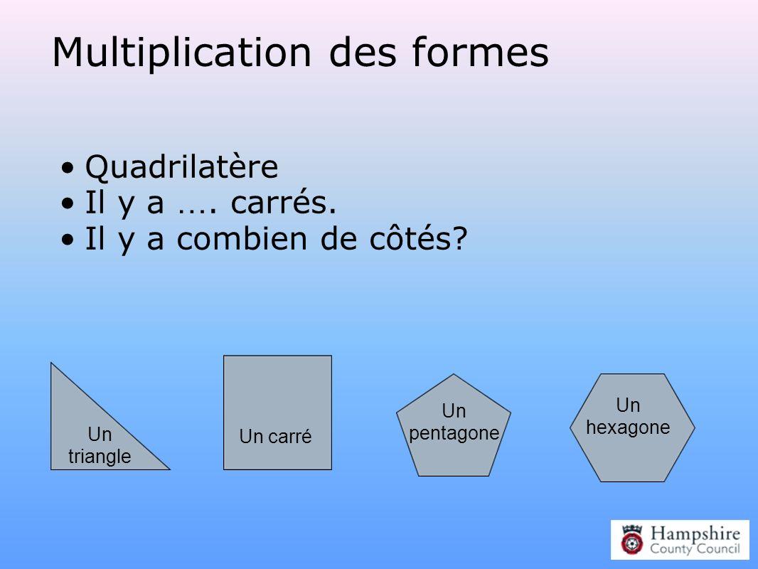 Multiplication des formes Quadrilatère Il y a …. carrés. Il y a combien de côtés? Un hexagone Un pentagone Un triangle Un carré