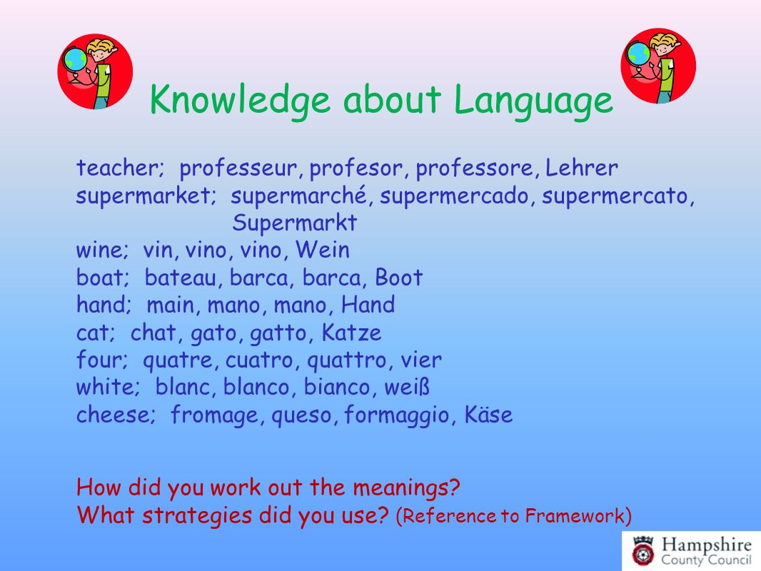 Knowledge about Language teacher; professeur, profesor, professore, Lehrer supermarket; supermarché, supermercado, supermercato, Supermarkt wine; vin,