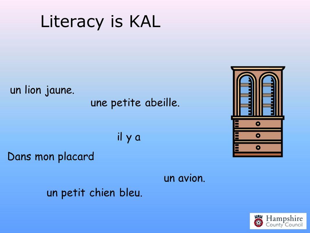 Literacy is KAL Dans mon placard il y a un lion jaune. un petit chien bleu. une petite abeille. un avion.