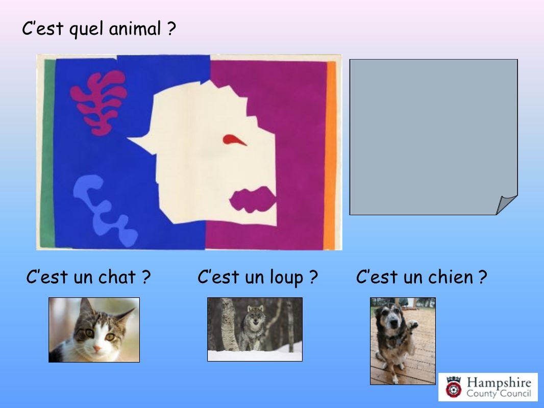Cest quel animal ? Cest un chat ?Cest un chien ?Cest un loup ? Le Loup (1944) © Succession H Matisse/DACS 2007 Photo: Archives Matisse (D.R)