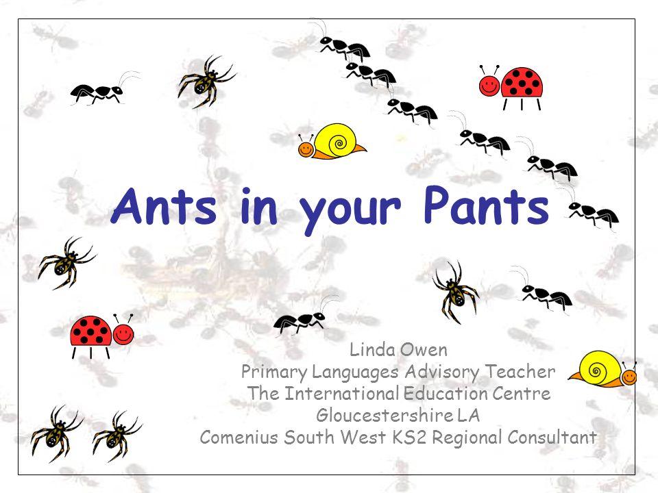 Ants in your Pants Linda Owen Primary Languages Advisory Teacher The International Education Centre Gloucestershire LA Comenius South West KS2 Regiona
