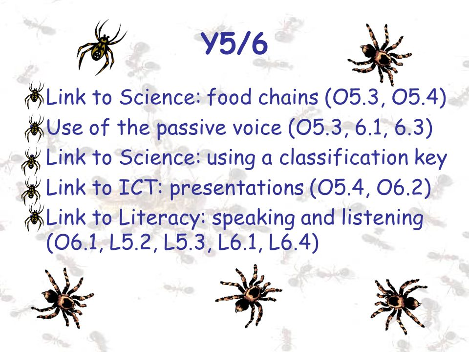 Y5/6 Link to Science: food chains (O5.3, O5.4) Use of the passive voice (O5.3, 6.1, 6.3) Link to Science: using a classification key Link to ICT: pres