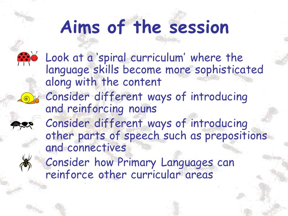 Aims of the session Look at a spiral curriculum where the language skills become more sophisticated along with the content Consider different ways of