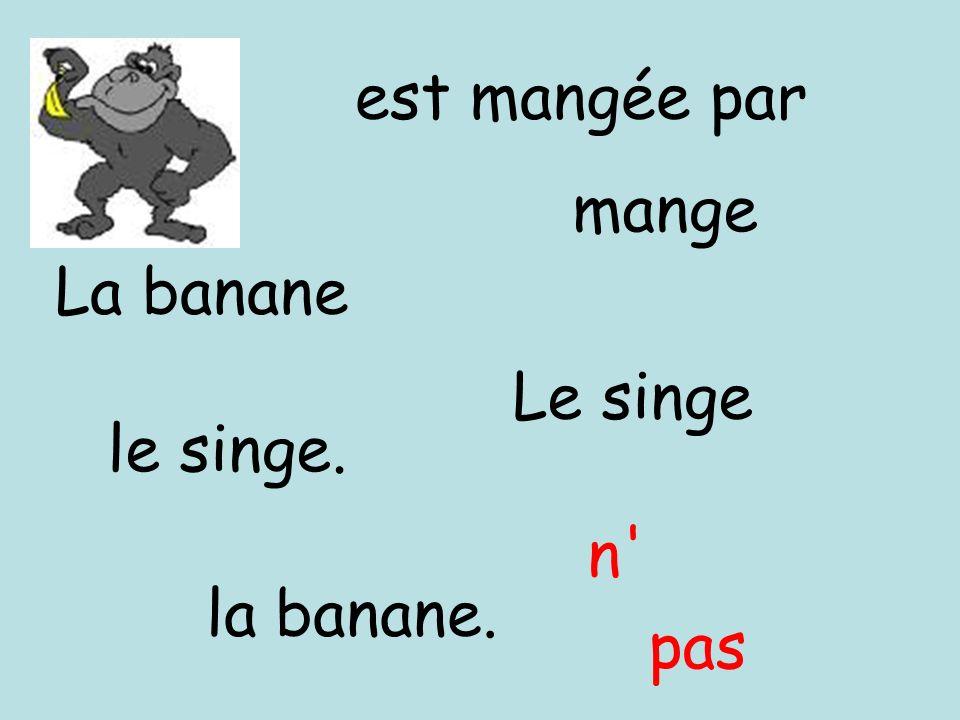pas est mangée par Le singe mange la banane. le singe. La banane n'