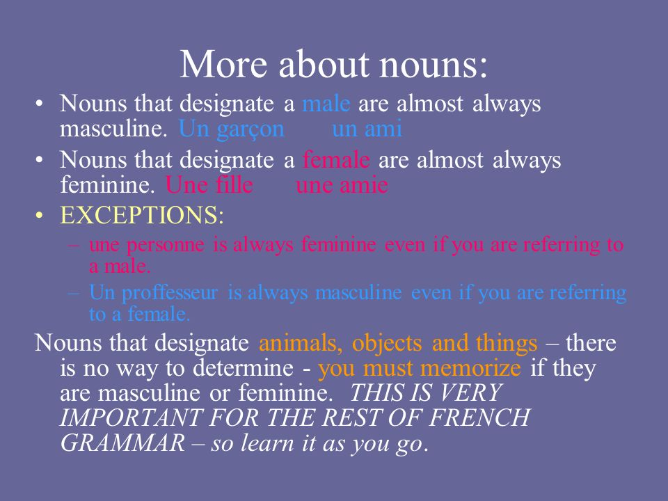 More about nouns: Nouns that designate a male are almost always masculine. Un garçon un ami Nouns that designate a female are almost always feminine.