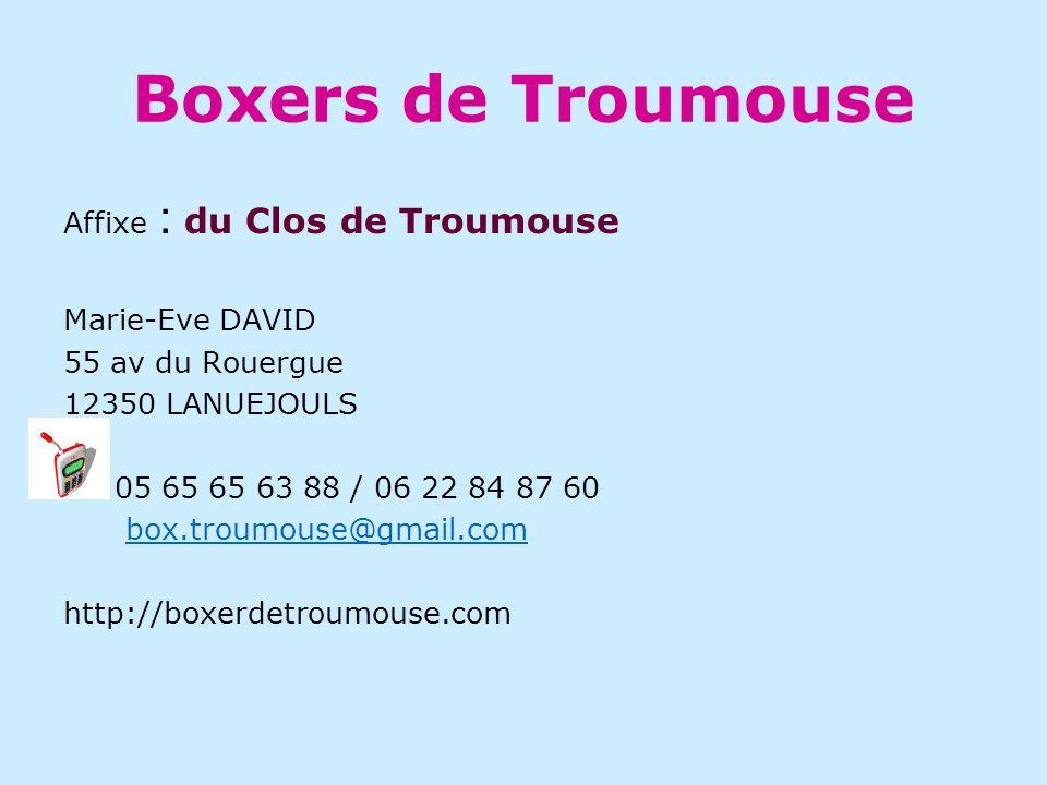 Boxers de Troumouse Affixe : du Clos de Troumouse Marie-Eve DAVID 55 av du Rouergue 12350 LANUEJOULS 05 65 65 63 88 / 06 22 84 87 60 box.troumouse@gmail.com http://boxerdetroumouse.com