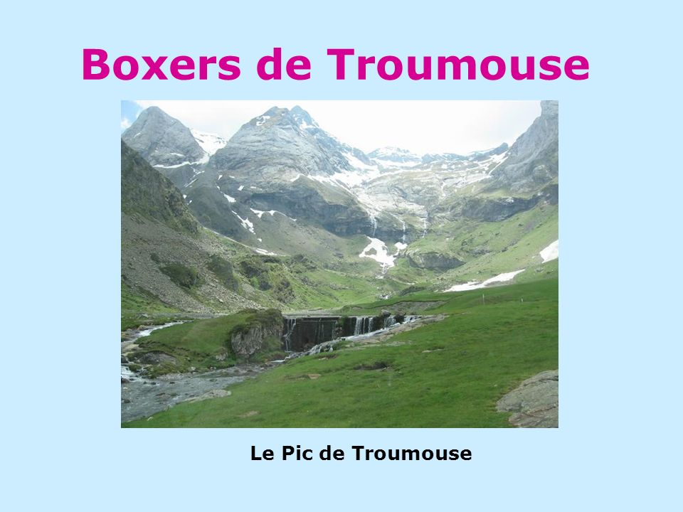 Boxers de Troumouse Le Pic de Troumouse