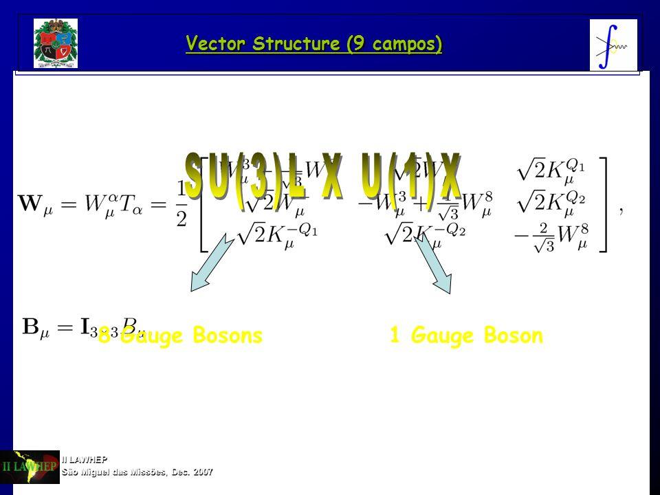 8 Gauge Bosons1 Gauge Boson II LAWHEP São Miguel das Missões, Dec. 2007 Vector Structure (9 campos)
