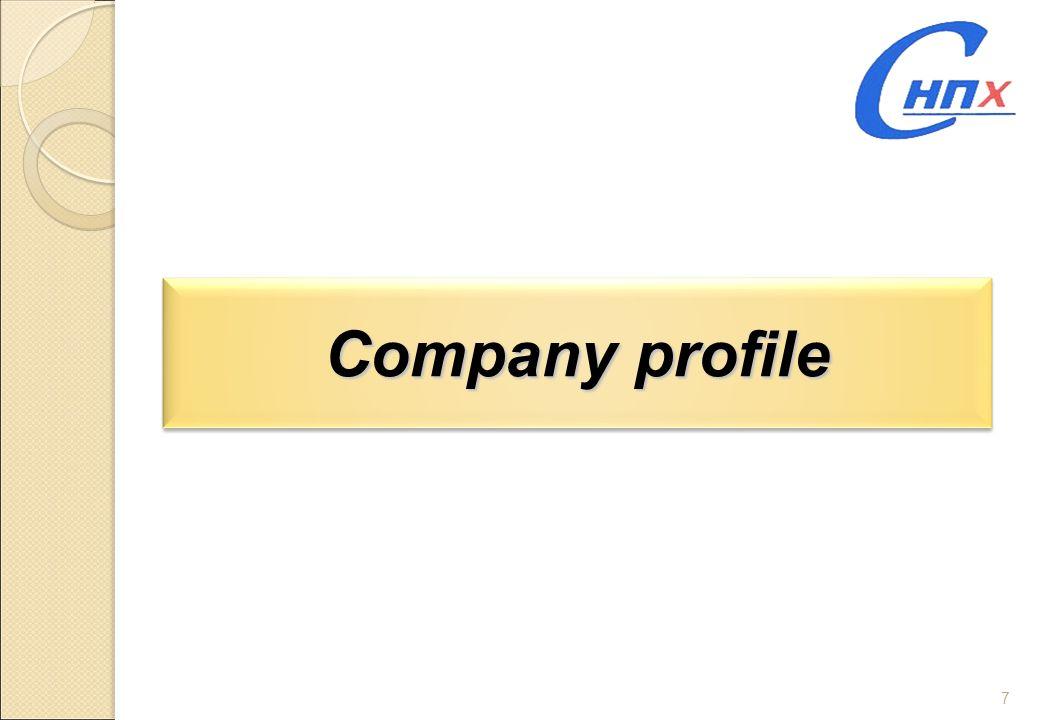 7 Company profile