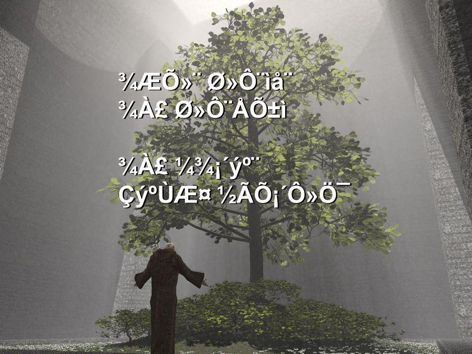 ¾ÆÕ»¨ Ø»Ô¨ìå¨ ¾À£ Ø»Ô¨ÅÕ±ì ¾À£ ¼¾¡´ýº¨ ÇýºÙƤ ½ÃÕ¡´Ô»Ö¯ ¾ÆÕ»¨ Ø»Ô¨ìå¨ ¾À£ Ø»Ô¨ÅÕ±ì ¾À£ ¼¾¡´ýº¨ ÇýºÙƤ ½ÃÕ¡´Ô»Ö¯