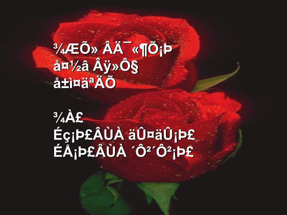 ¾ÆÕ» Âį«¶Õ¡Þ 夽â Âÿ»Ô§ å±ì¤äªÄÕ ¾À£ Éç¡Þ£ÂÙÀ äÛ¤äÛ¡Þ£ ÉÅ¡Þ£ÂÙÀ ´Ô²´Ô²¡Þ£ ¾ÆÕ» Âį«¶Õ¡Þ 夽â Âÿ»Ô§ å±ì¤äªÄÕ ¾À£ Éç¡Þ£ÂÙÀ äÛ¤äÛ¡Þ£ ÉÅ¡Þ£ÂÙÀ ´Ô²´Ô²¡Þ£