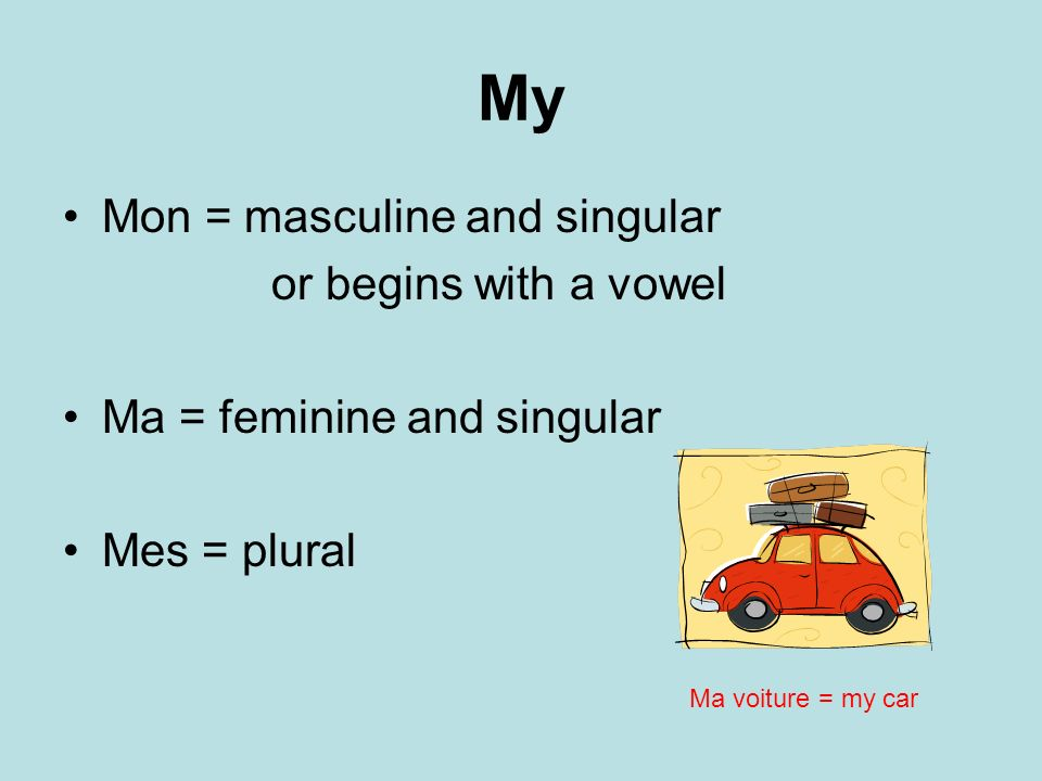 My Mon = masculine and singular or begins with a vowel Ma = feminine and singular Mes = plural Ma voiture = my car
