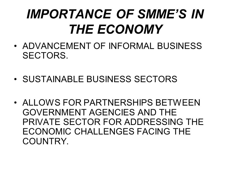 IMPORTANCE OF SMMES IN THE ECONOMY ADVANCEMENT OF INFORMAL BUSINESS SECTORS. SUSTAINABLE BUSINESS SECTORS ALLOWS FOR PARTNERSHIPS BETWEEN GOVERNMENT A