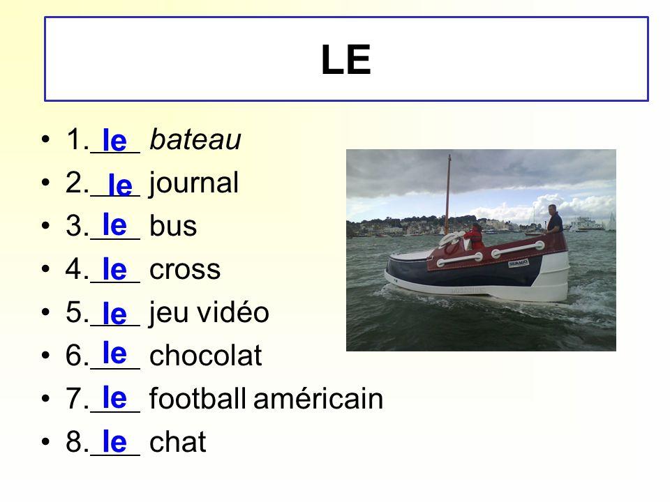 1. bateau 2. journal 3. bus 4. cross 5. jeu vidéo 6. chocolat 7. football américain 8. chat le LE