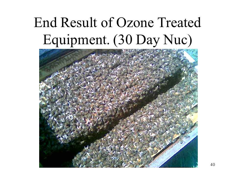 40 End Result of Ozone Treated Equipment. (30 Day Nuc)