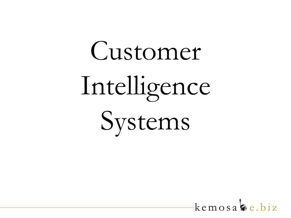 Customer Intelligence Systems