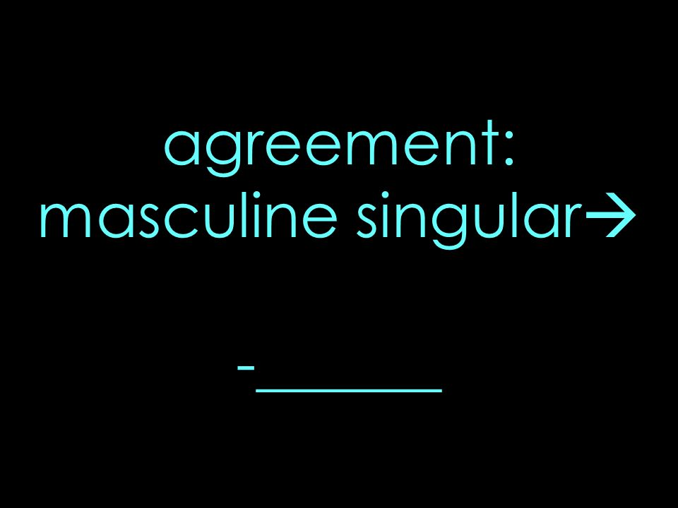 agreement: masculine singular -______