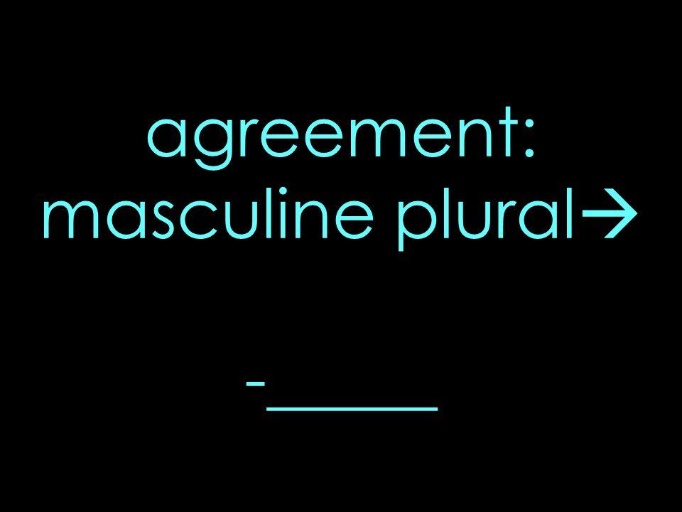 agreement: masculine plural -_____