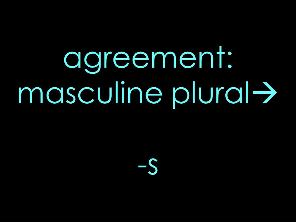 agreement: masculine plural -s