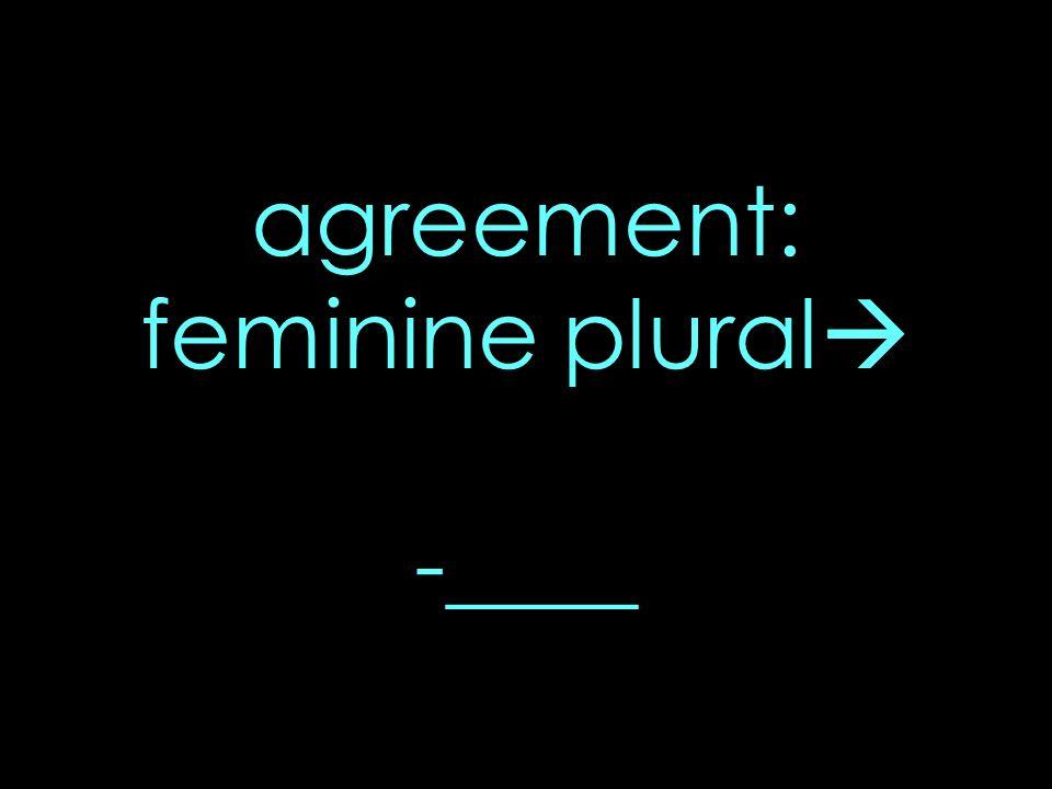 agreement: feminine plural -____